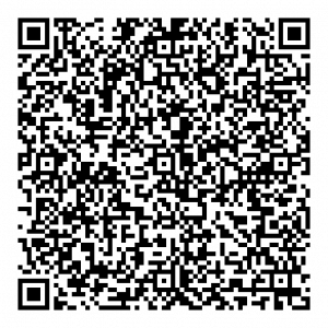 static qr code without logo 3